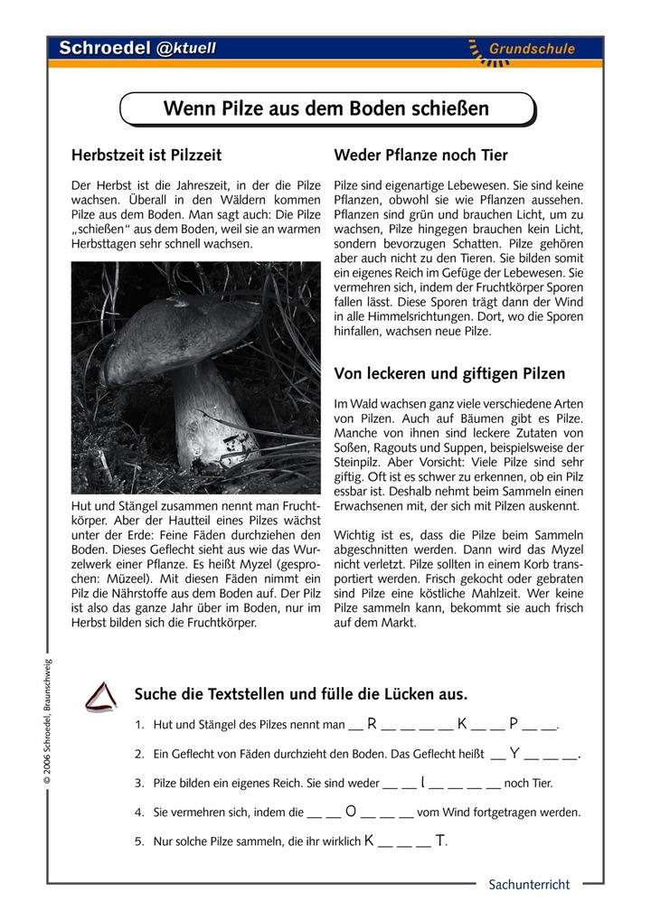 Ziemlich Scout Essen Planung Arbeitsblatt Galerie - Arbeitsblätter ...