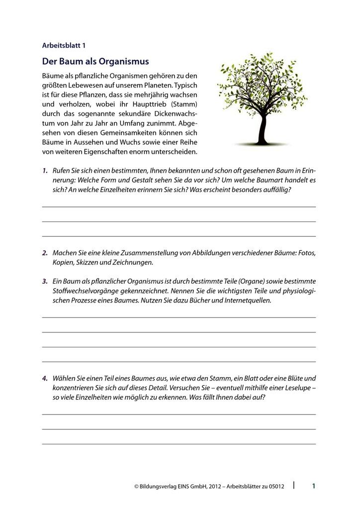 05012_001_00_BPW.pdf: LÜK - Lernen, Üben, Kontrollieren