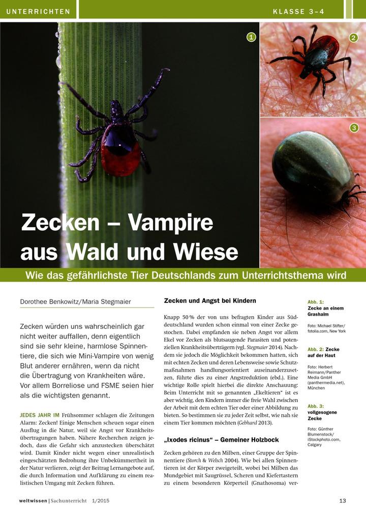 zecken vampire aus wald und wiese wie das gef hrlichste tier deutschlands zum. Black Bedroom Furniture Sets. Home Design Ideas