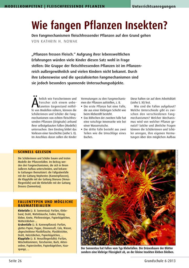 Wie fangen Pflanzen Insekten? - Den Fangmechanismen ...