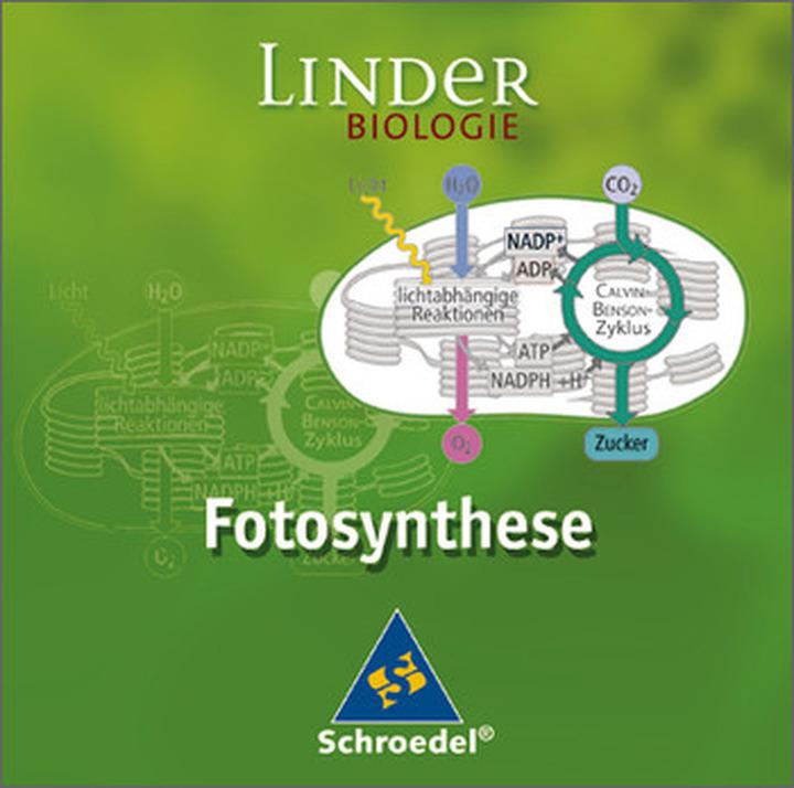 Fotosynthese - Einzelplatzlizenz: Schroedel Verlag