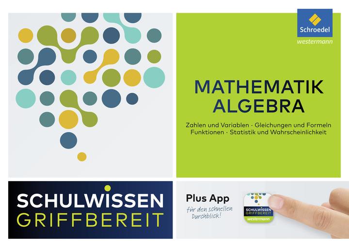 Schulwissen griffbereit - Mathematik Algebra: Schroedel Verlag