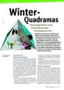 Vorschaubild: Beitrag Winter-Quadramas - Einsatzmöglichkeiten neuer Präsentationsformen im Anfangsunterricht