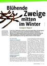 Vorschaubild: Beitrag Blühende Zweige mitten im Winter - Unmöglich? Möglich!