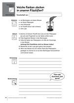 Beispielseite Forscherbox Stoffe Filzstifte und Farben