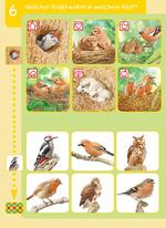 Welcher Vogel wohnt in welchem Nest?