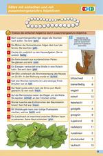 Sätze mit einfachen und zusammengesetzten Adjektiven