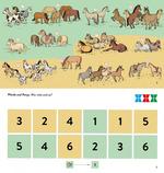 Pferde und Ponys. Wie viele sind es?