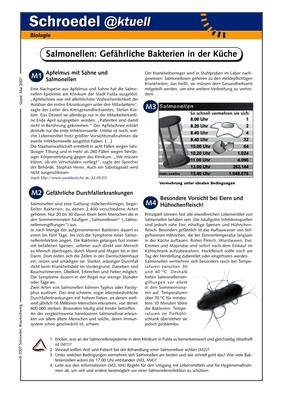 Salmonellen: Gefährliche Bakterien in der Küche - - ein Arbeitsblatt ...