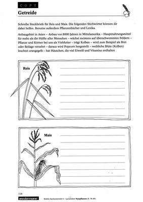 Getreide - Mais und Reis: Verlage der Westermann Gruppe