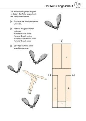 Computational Mechanics of Composite