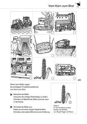 vom korn zum brot produktion von lebensmitteln verlage der westermann gruppe. Black Bedroom Furniture Sets. Home Design Ideas