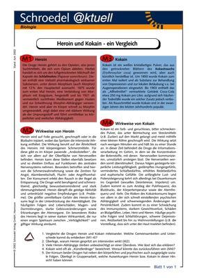 Heroin und Kokain - ein Vergleich - - ein Arbeitsblatt zu den ...