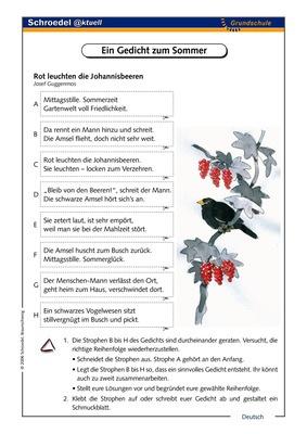 Ein Gedicht Zum Sommer Ein Arbeitsblatt Zu Einem Sommergedicht Ab Klasse 3