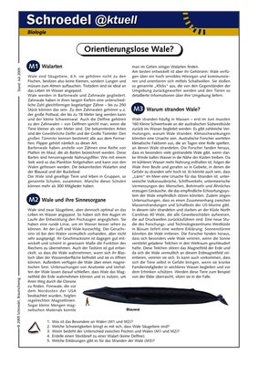 orientierungslose wale ein arbeitsblatt ber die ursachen des strandens von walen f r den. Black Bedroom Furniture Sets. Home Design Ideas