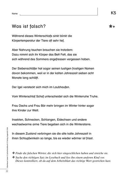 Abenteuer Lesen 3 - Begleitheft für Lehrer/innen: Westermann Gruppe ...
