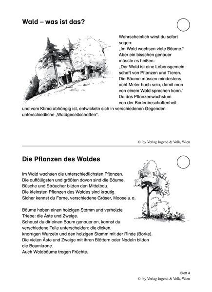 Das will ich wissen 8 - Aktualisierung - Wald, Pilze, Spechte ...