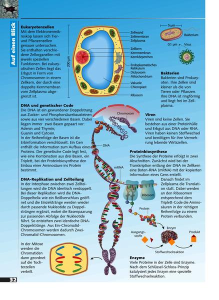 Erlebnis Biologie - Ausgabe 2007 für das mittlere Lernniveau in ...