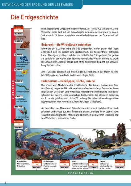 Neugierig auf ... BIOLOGIE 3: Westermann Gruppe in Österreich