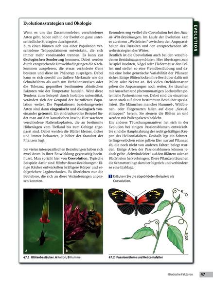 Ökologie - Schülerband: Schroedel Verlag
