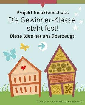 Gewinnspiel Insektenschutz