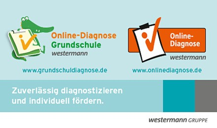 Online Diagnose